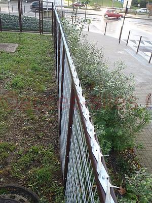 Herses épinoches galva vissées sur clôture grillagée